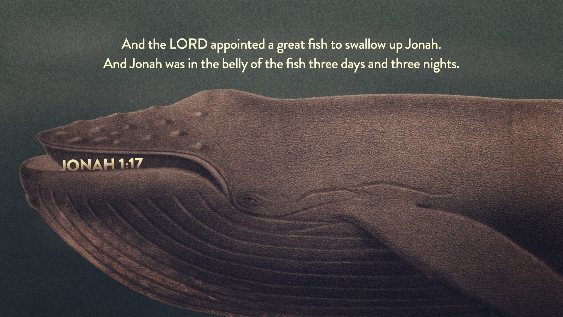 Jonah: God's Heart for the Lost